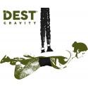 DEST Gravity